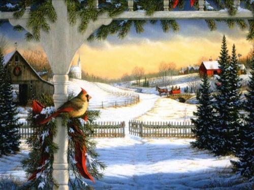 Краса зимової природи
